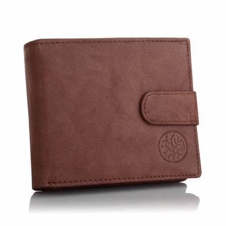 Stylowy portfel betlewski bpm-gtn-63 brązowy